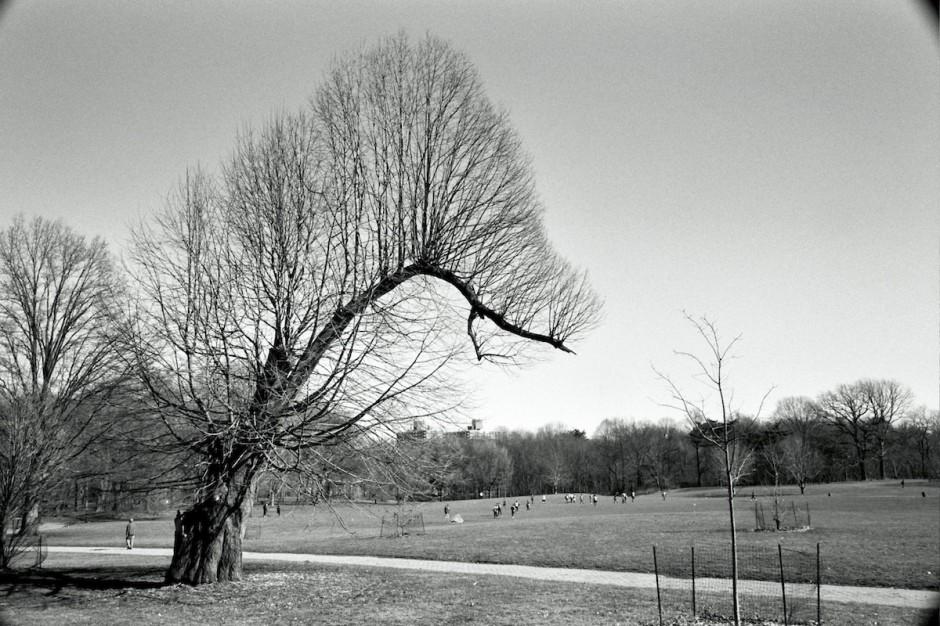 February_8